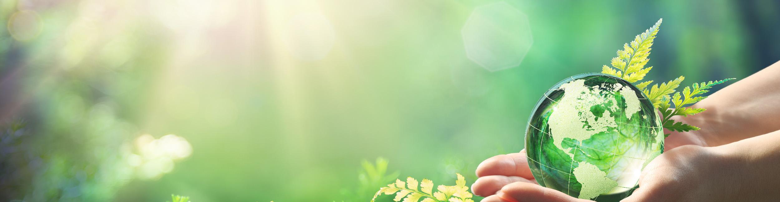 Bioéconomie et Protection de l'Environnement