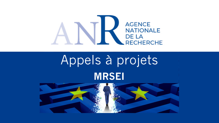 Subvention MRSEI - Montage de projets européens